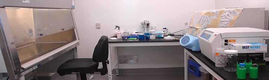 BSL-2 Tissue Culture Lab