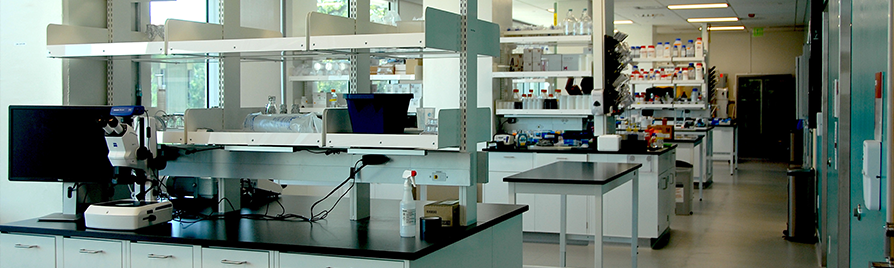 Biochemistry_wet lab space